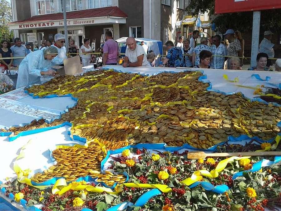 Рекорд із 8030 дерунів на карті України зафіксували в Бару