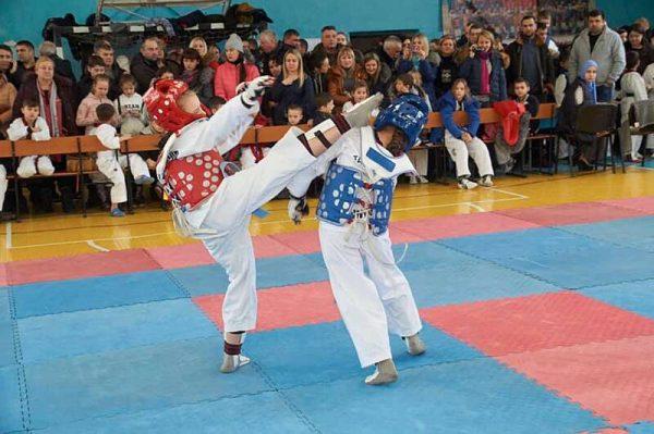 Хто переміг на чемпіонаті Вінницької області із Тхеквондо ВТФ?