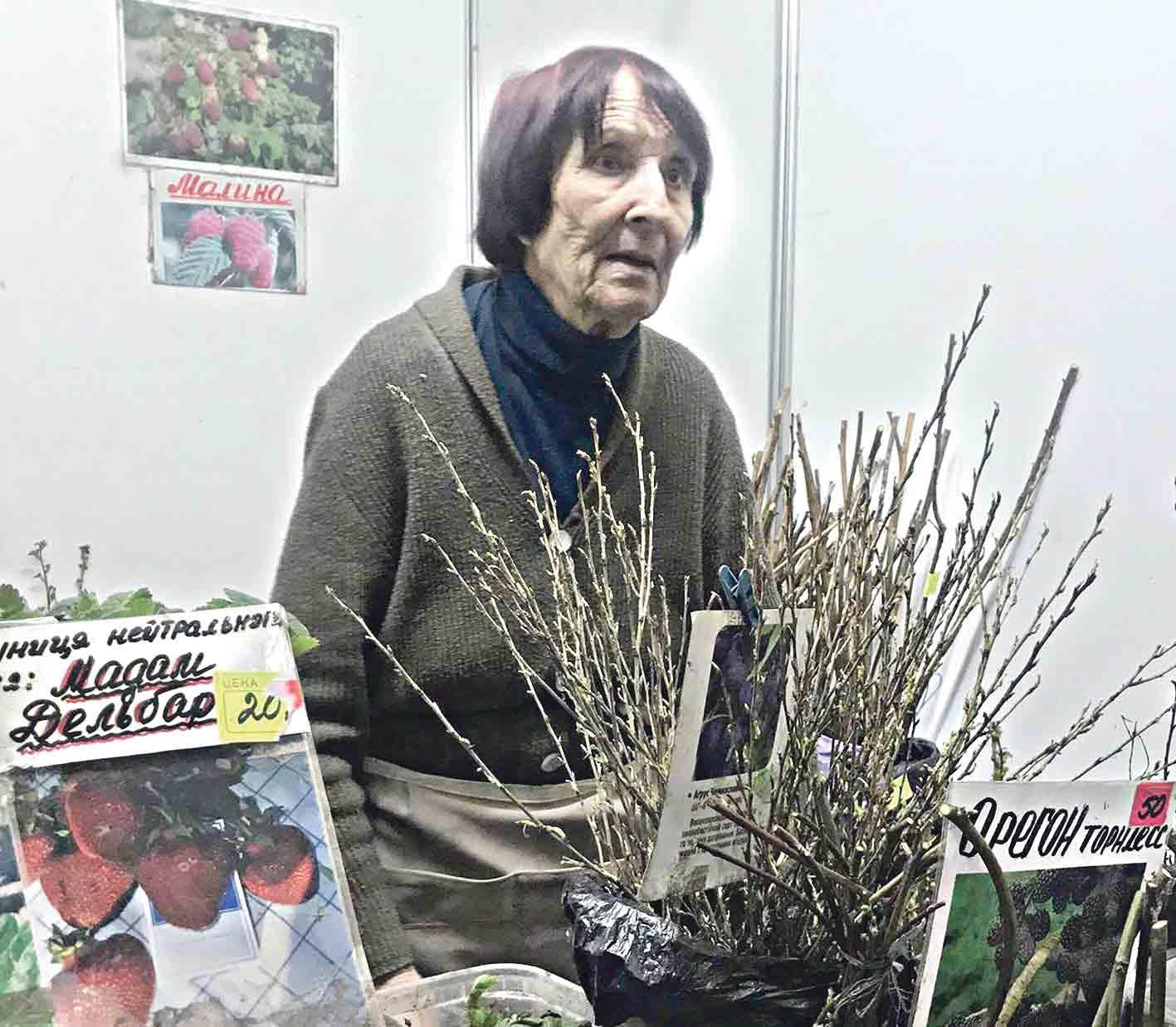 Смородину Чорний Бумер та інжир вирощує вінницька пенсіонерка