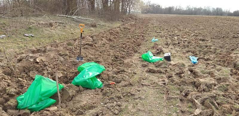 Знайшли останки 10 німецьких солдатів під Рубанню