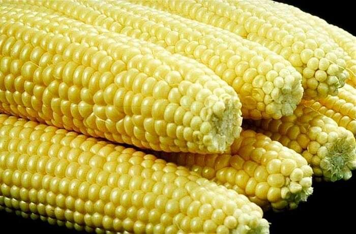 "Вінницький фестиваль солодкої кукурудзи ""VinCornFest"""