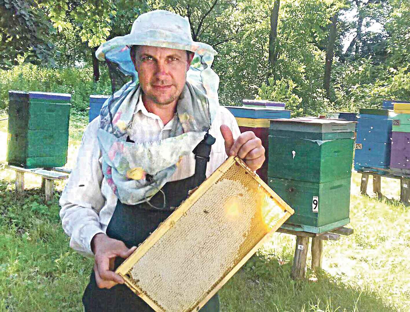 «Добрі пасічники» з Морозівки годують Україну якісним та смачним медом