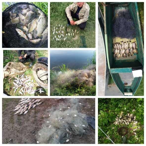 502 порушення правил рибальства виявили рибінспектори Вінниччини під час нересту