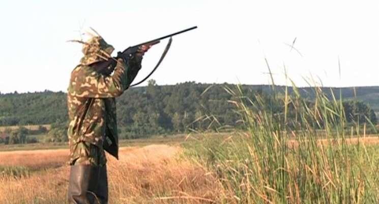 У лісах Тульчинського району вполювали 13 козуль