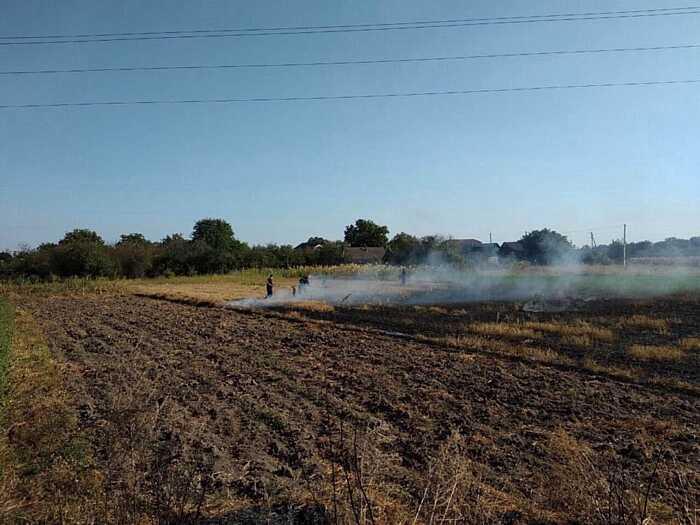 Вчора на Вінниччині 15 разів гасили суху траву