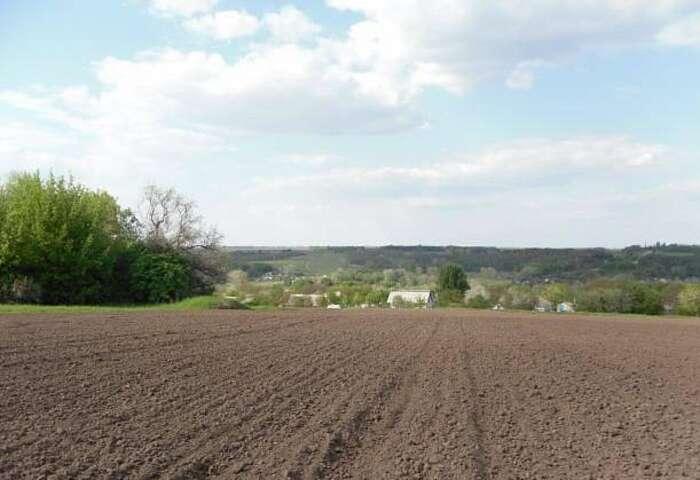 На Вінниччині прокуратура через суд вимагає стягнення заборгованості з орендної плати за землю