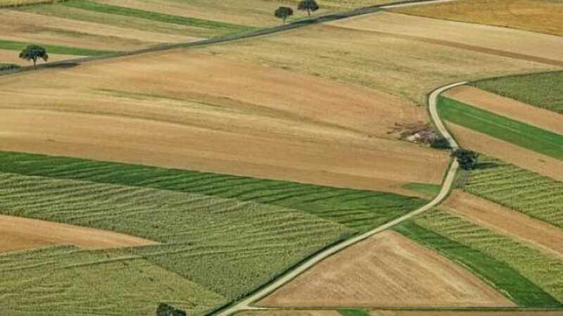 Хто в десятці найкрупніших землевласників України?
