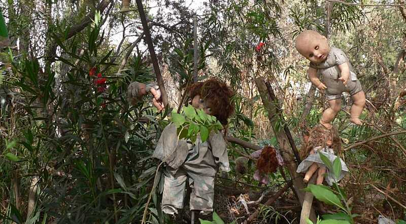 Що означають «Мертві ляльки» в Могилівці»? Староста села просить людей заспокоїтись після страшної знахідки