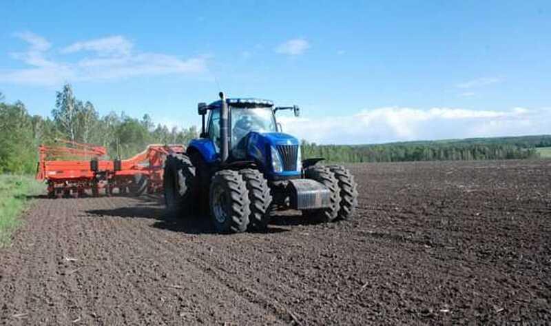 Озимі під урожай 2020-го посіяні
