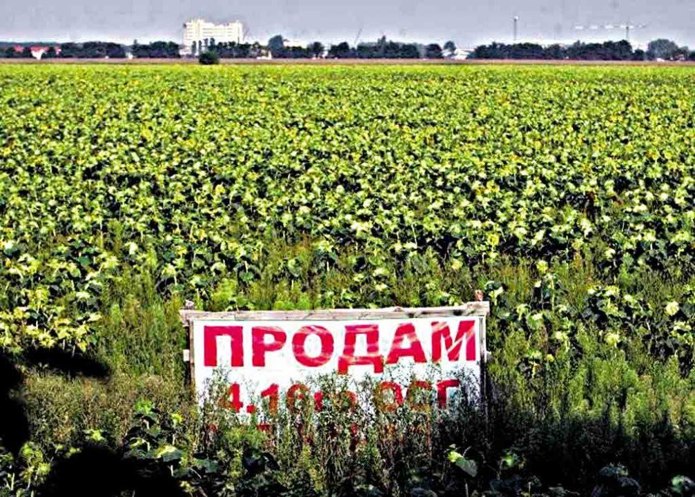«Поганими новинами» називають українські фермери урядове рішення про відкриття ринку землі з 1 жовтня 2020 року