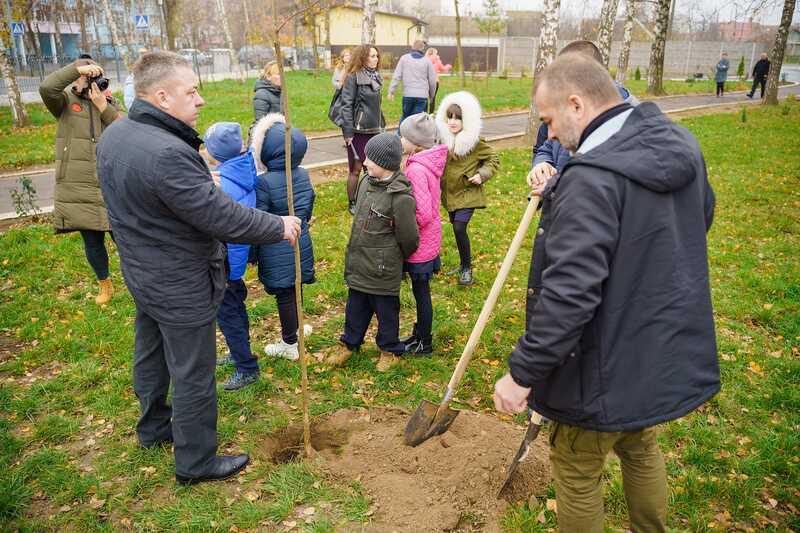 115 дерев висадять на подвір'ях десяти шкіл Вінниці