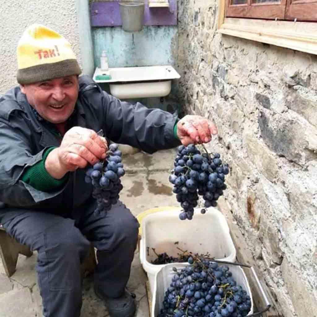 Через сфальсифікований протокол за п'яну їзду повішався пенсіонер на Вінниччині?
