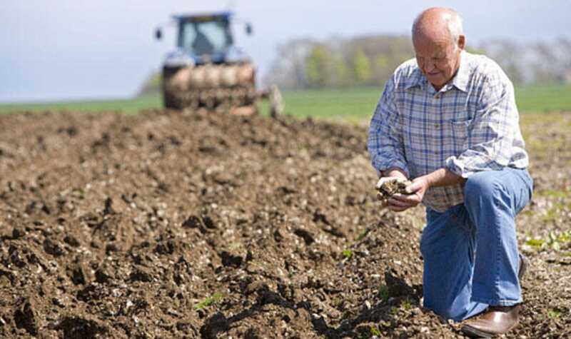 Яким буде кредитування фермерів після відкриття ринку землі?