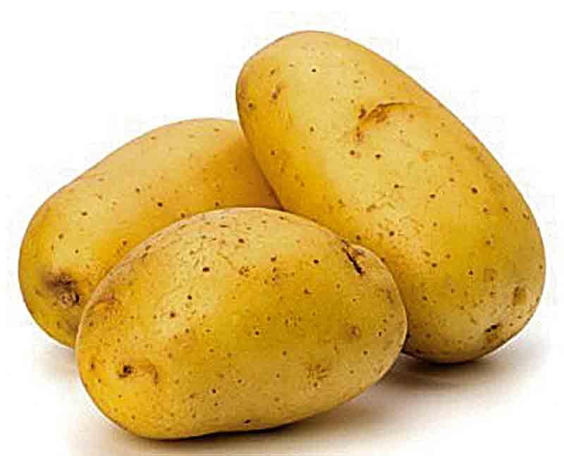 Картопля з провінції Бретань – тренд серед вінничан