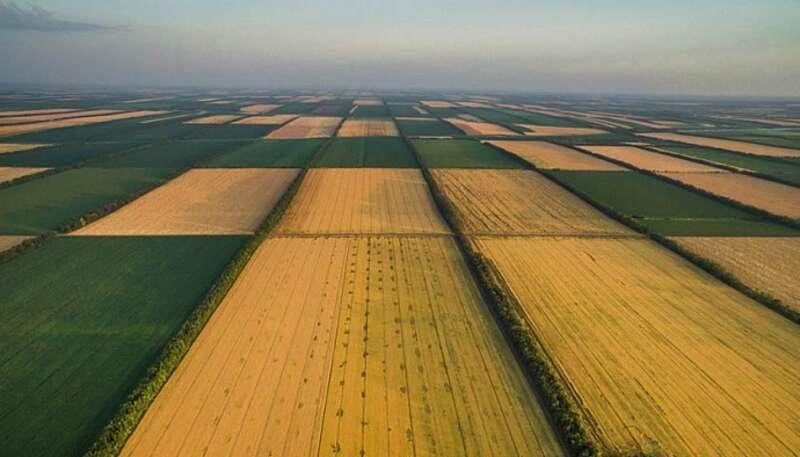 Парламент вночі ухвалив закон про ринок землі