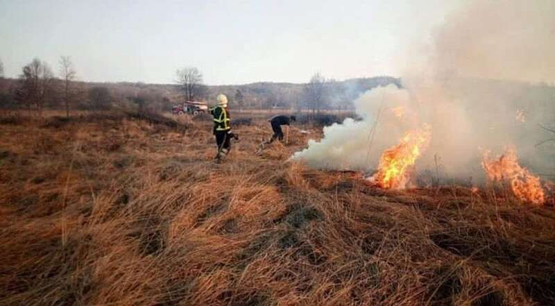 48 пожеж виникло на Вінниччині від спалювання сухої трави