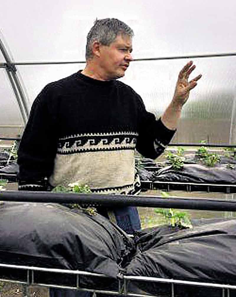Екзотичні овочі на городі вирощує переселенець з Донбассу