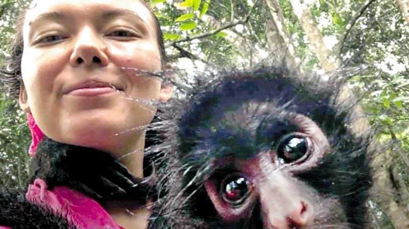 Вінничанка доглядала мавпочок у джунглях Південної Америки. Туди поїхала як волонтерка