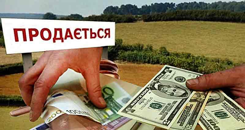 «Продам право на землю у Вінницькій області» – оголошення такого змісту після карантину знову активізувалися в Інтернет-мережі