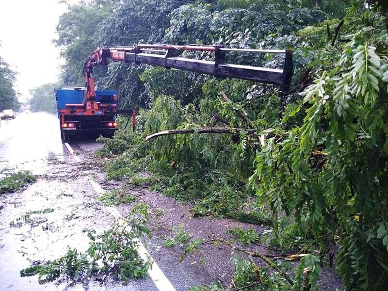 Падали дерева і затоплювало будинки під час негоди на Вінниччині
