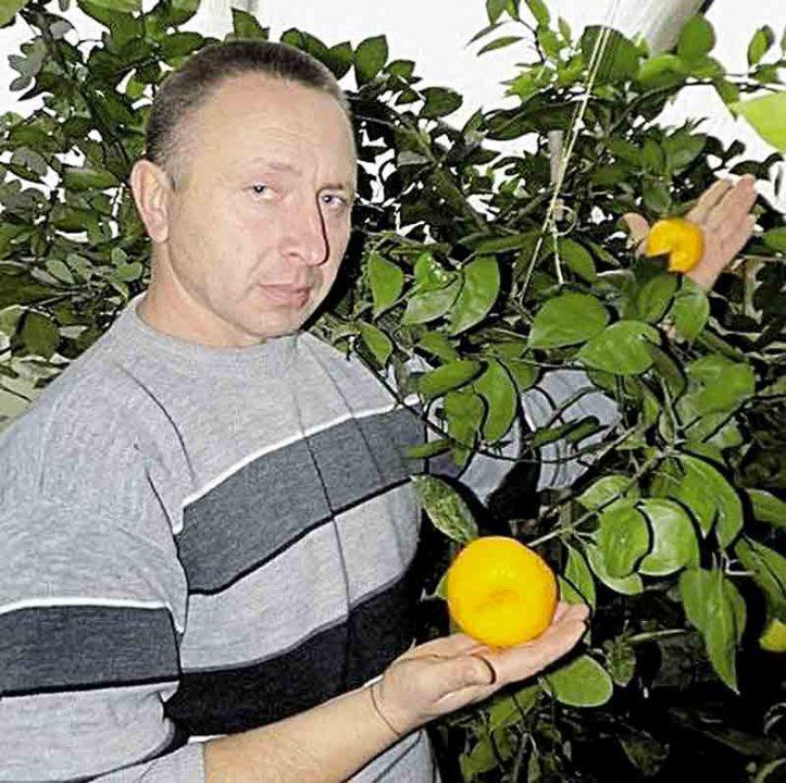 Більше сотні екзотичних фруктів вирощує вінничанин у себе на городі