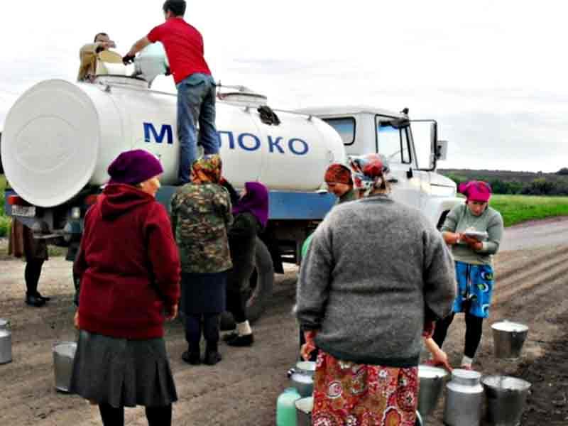 Просимо підняти вартість молока, бо це геноцид (лист)