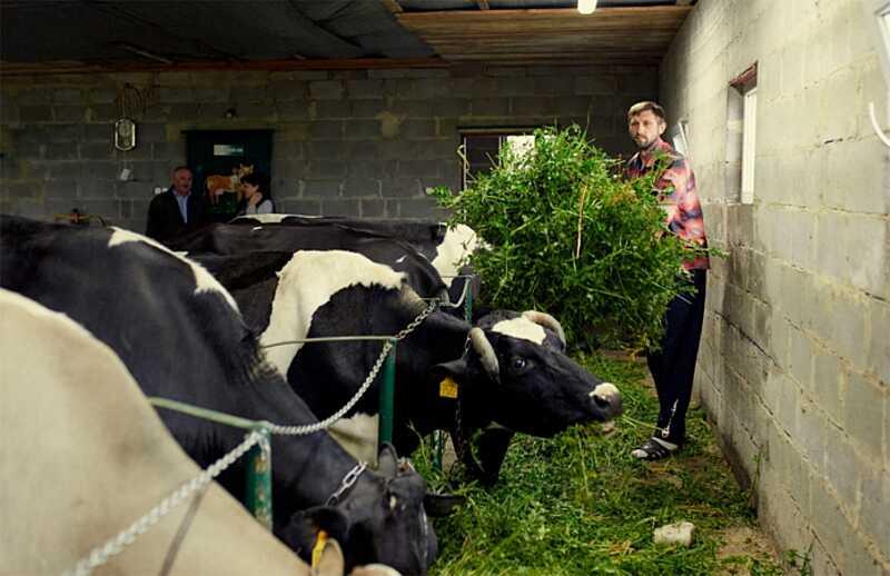 Проєкт сімейних молочних ферм починає роботу на Вінниччині