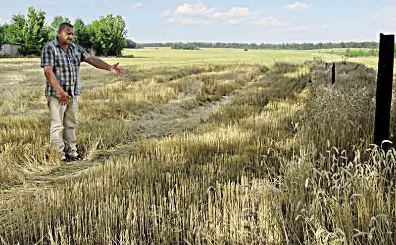 Урожайна битва в Іллінцях. Чи охороняла поліція «зернових рейдерів»? (подробиці)