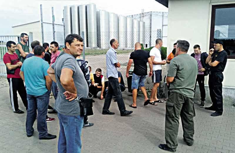 Липівчани вже тиждень пікетують місцевий соковий завод. Чому працівники звертаються у прокуратуру?
