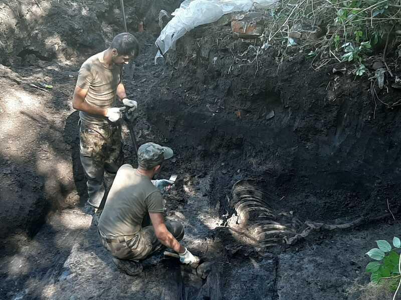У Вінниці знайшли і розкопують найбільше в світі та Україні кладовище військових Галицької армії (відео)
