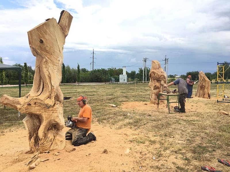 У Ладижині майстри перетворили три дерев'яних колоди у витвір мистецтва