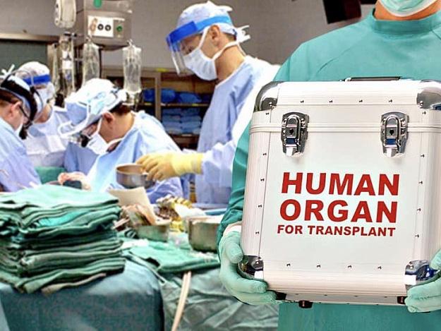 """Кабмін створив """"Український центр трансплантат-координації"""""""