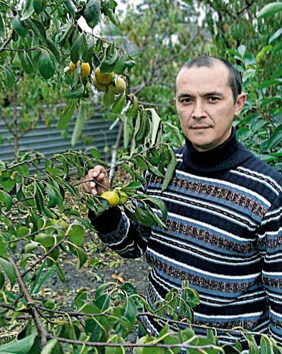 Подільська хурма з Мазурівки і сім тонн персиків із власного саду