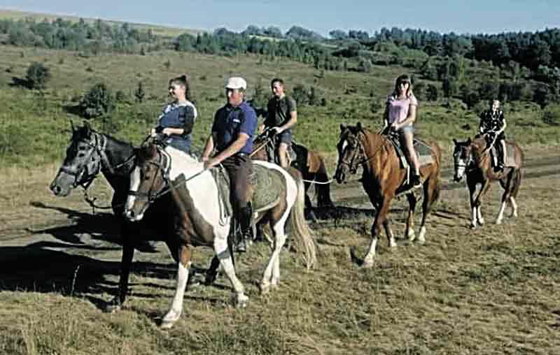 Унікальні екскурсії на конях влаштовує подружжя з Вінниччини