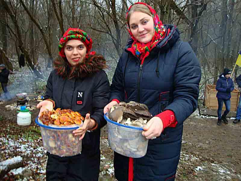 Зимові гриби на Новий рік – опеньки і лисички збирають на Вінниччині
