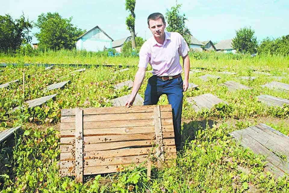 Равликів по-бургундськи вирощує та готує родина з Вінниччини