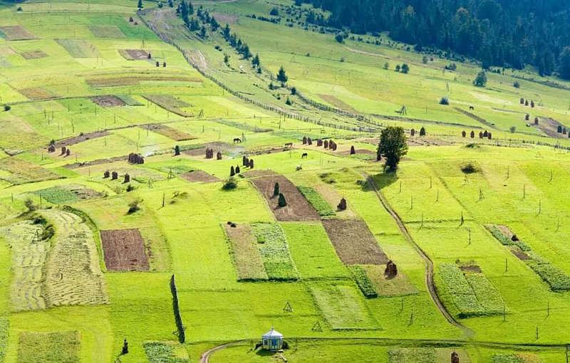 Названа вартість землі в Україні – 2 тис. доларів за гектар
