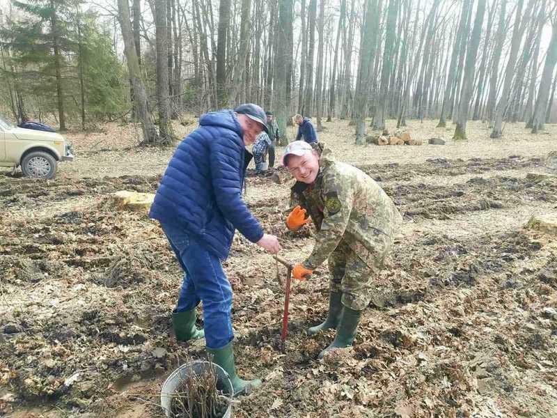 1700 молодих дерев висадили вінницькі активісти-природозахисники