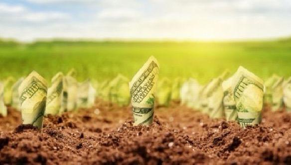 Наближається ринок землі… перевірте свою власність!