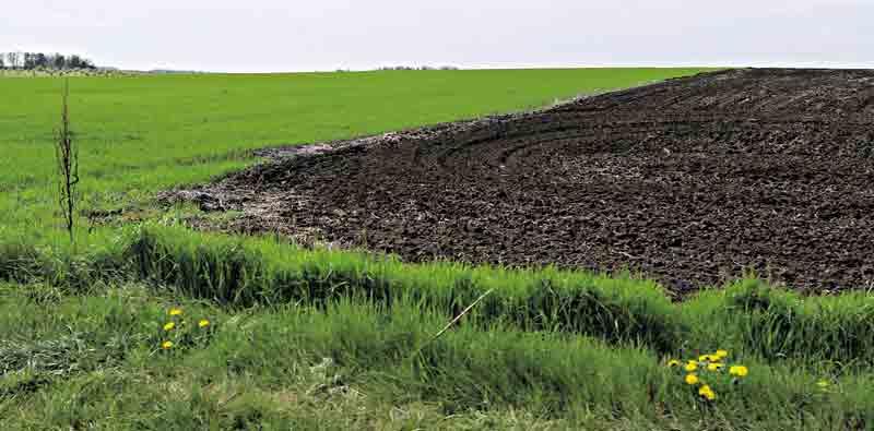 """""""Земля – не лише гектари для сільгоспвиробництва, це територія нації"""" або Чому доктор с/г наук, професор Віктор Барвінченко проти продажу землі?"""