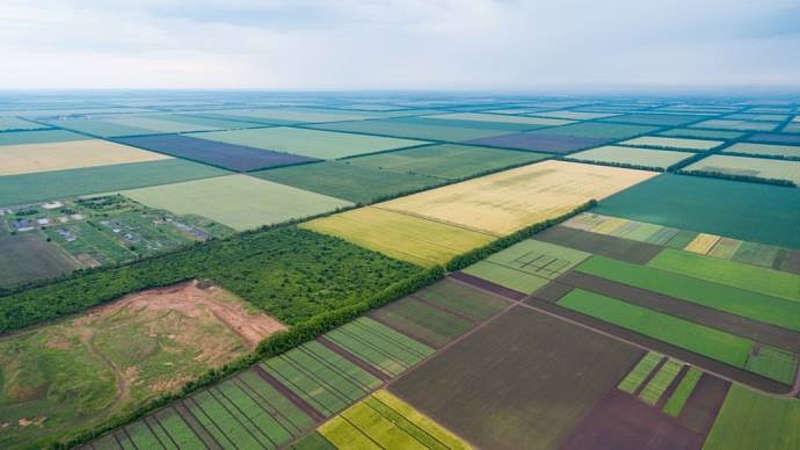 Хто є найбільшим землевласником на Вінниччині?