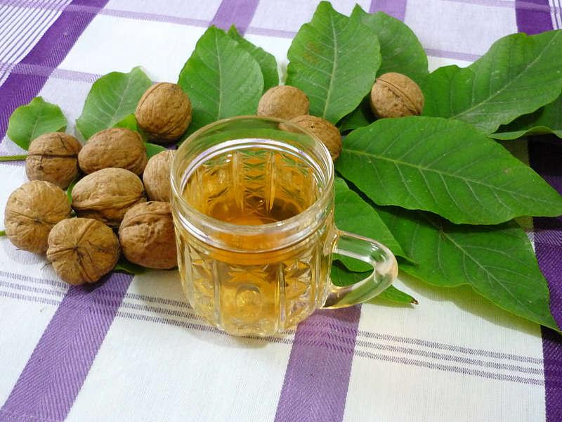 Чай із горіхового листя очищує кров