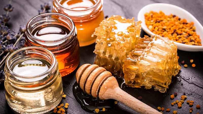 Липовий, гречаний чи акацієвий? Який мед кращий?