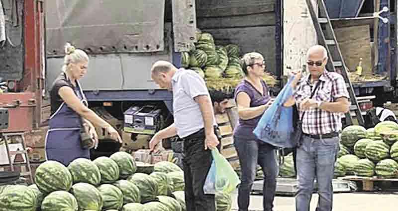 Сезон кавунів на Вінниччині – «імпорт» із Херсона та «смугастики» з ямпільської Кісниці