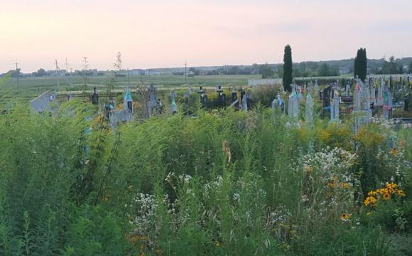 У Якушинецькій громаді хочуть зруйнувати старий цвинтар, щоб зробити дорогу