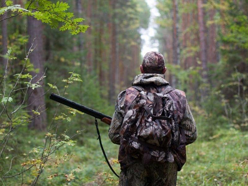 Вінницькі лісівники закликають: Мисливці, дотримуйтесь культури полювання та норм закону