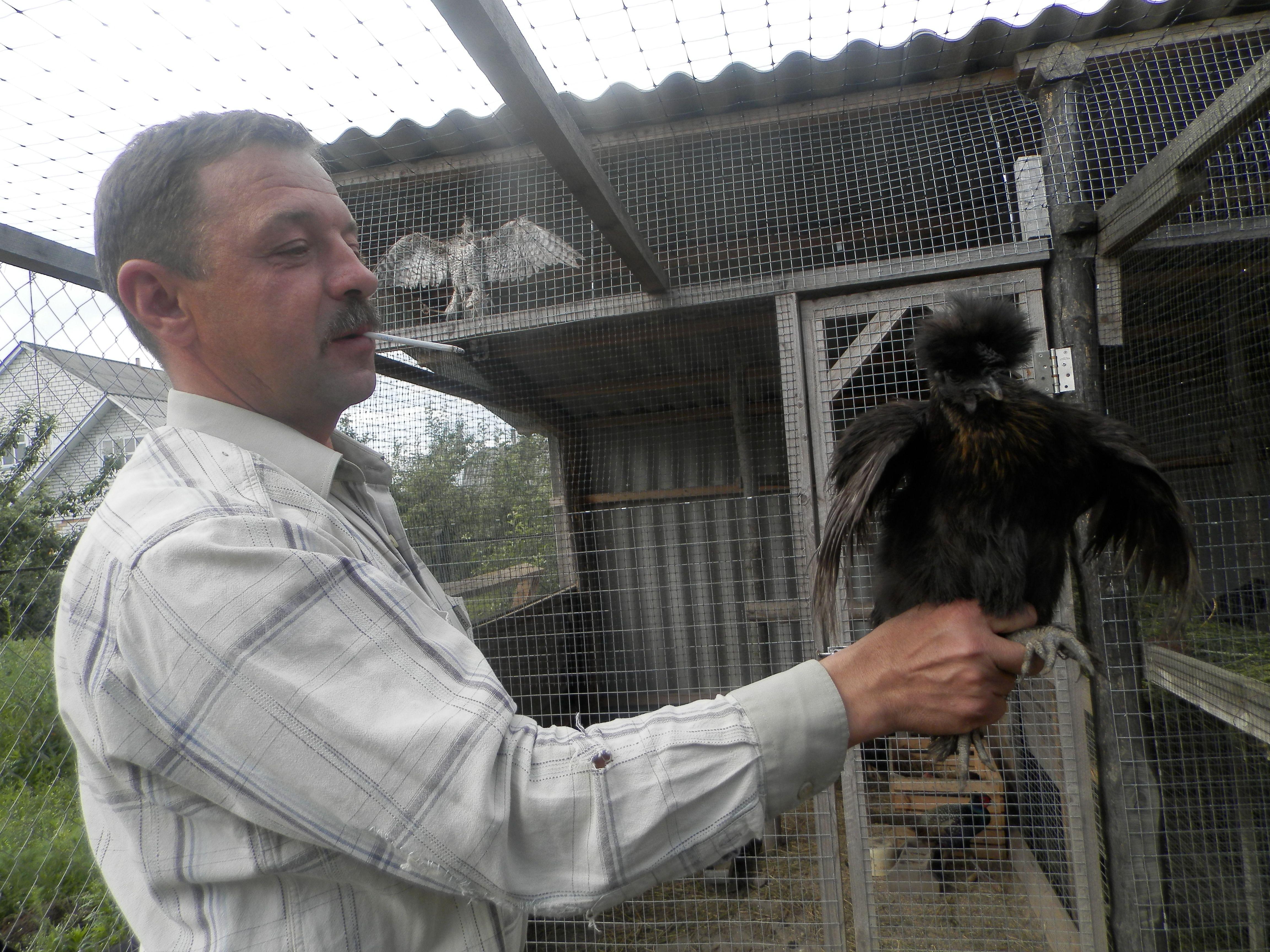 На Вінниччині живе король шиншил. Найдорожча тварина коштує 2500 гривень