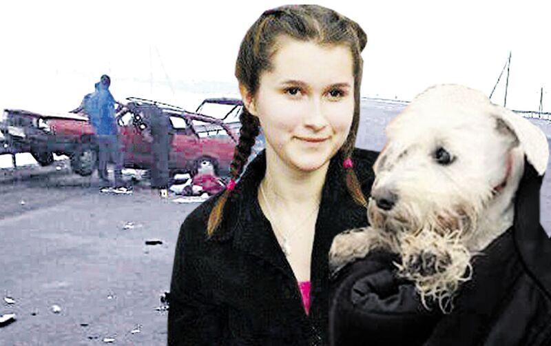 Собака не покинув місце загибелі господарки… Біля Калинівки розбились білоруські кінологи, які їхали до Молдови на виставку