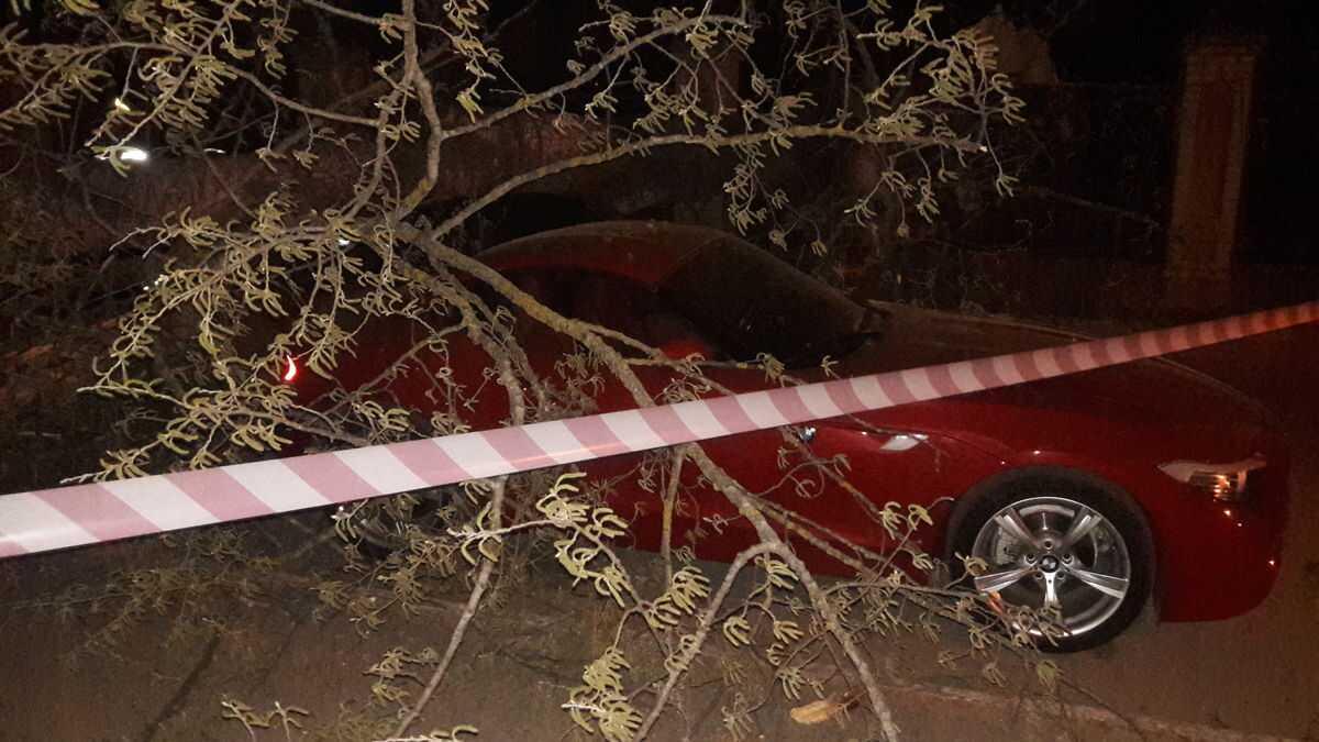 Стара тополя на «Поділлі» впала на нове БМВ! «П'ятниця -13-те» стала веселою для рятувальників та власниці червоного купе (відео)