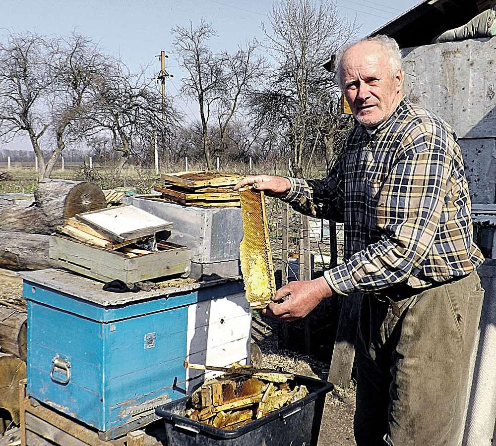 Молодий сад на зарослому городі посадив приїжджий чоловік з Молдови